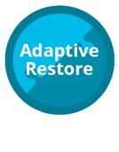Paragon Adaptive Restore
